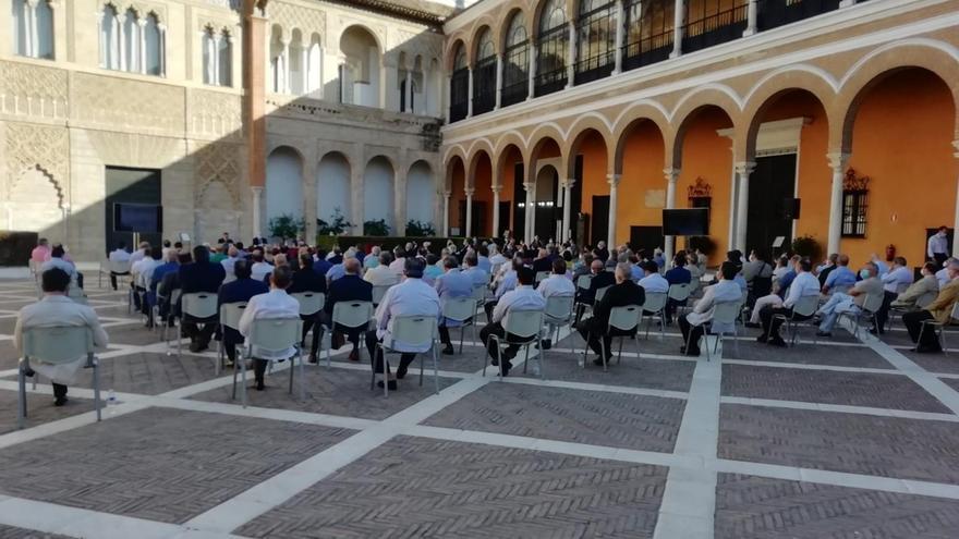 Las hermandades aprueban devolver el dinero de las sillas de Carrera Oficial a los abonados que lo soliciten
