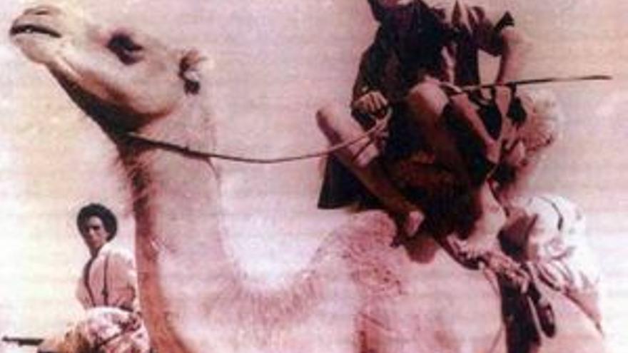 Patrulla de las tropas nómadas en camello. (CEAS)