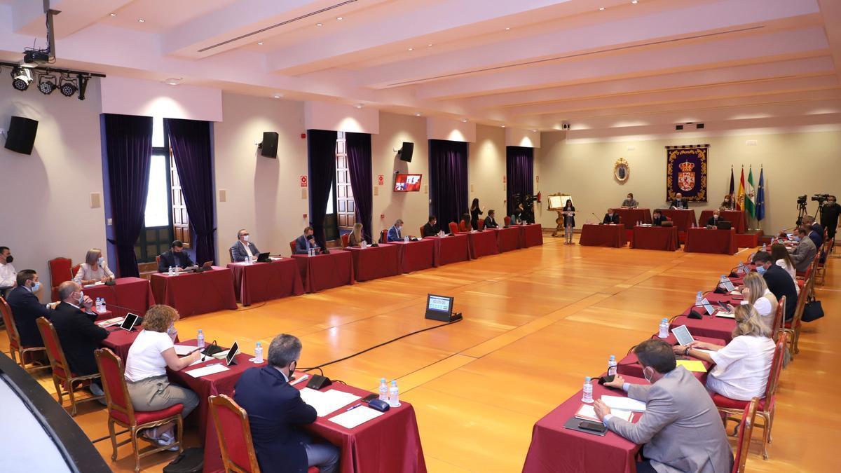 Pleno ordinario de la Diputación celebrado en el salón de actos del Palacio de la Merced