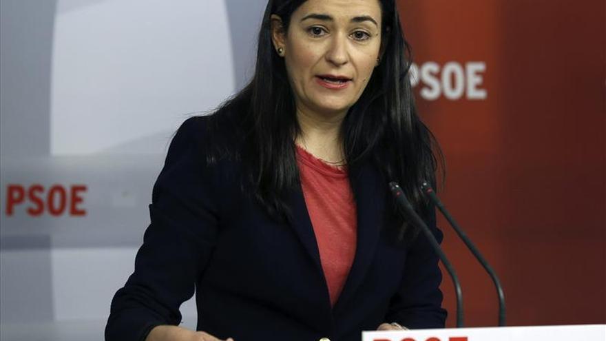 El PSOE denuncia fallos en el sistema de protección a la mujer asesinada en el hospital