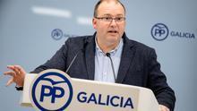 Miguel Tellado, secretario general del PP gallego