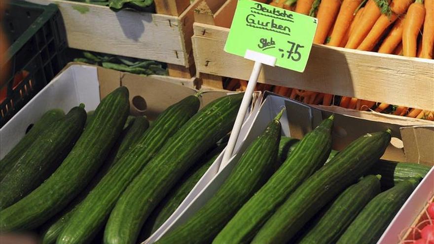 Investigadores proponen un método para reducir la bacteria E.coli en los alimentos