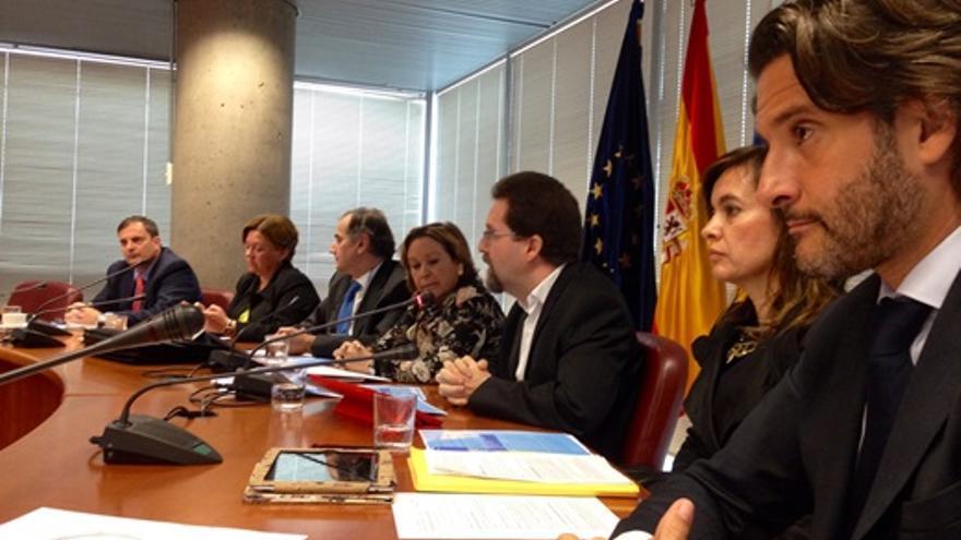 La consejera de Empleo, Industria y Comercio del Gobierno de Canarias, Francisca Luengo, hace balance en rueda de prensa de la gestión de su departamento durante 2013.