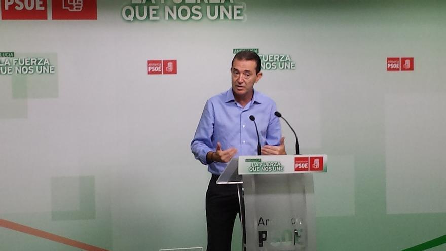 """Pérez Navas (PSOE): """"Quiero al partido detrás de mí y liderar una política de propuestas"""""""
