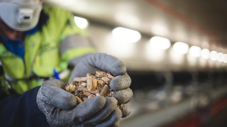 Pellets de madera utilizados en la central de Drax.