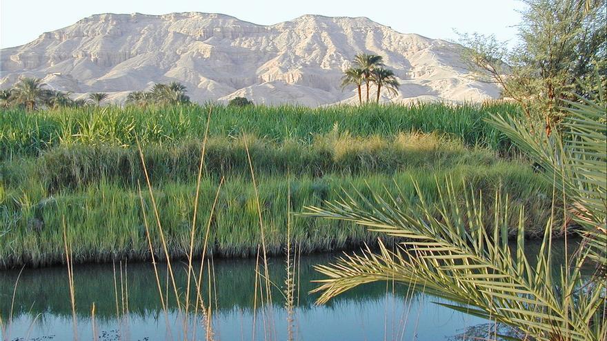 Los campos verdes de Luxor contrastan con la aridez de las montañas dónde los artesanos excavaron las tumbas reales. Jean-Pierre Dalbéra