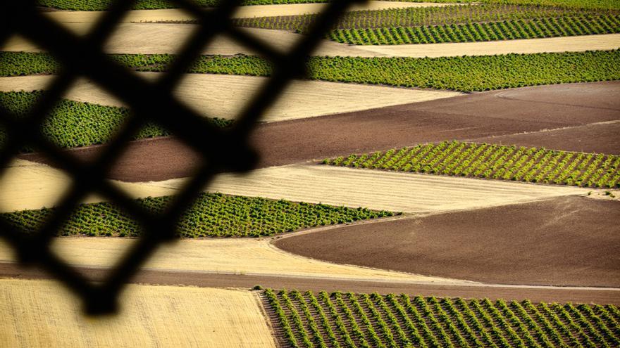 FOTO: Turismo Castilla-La Mancha