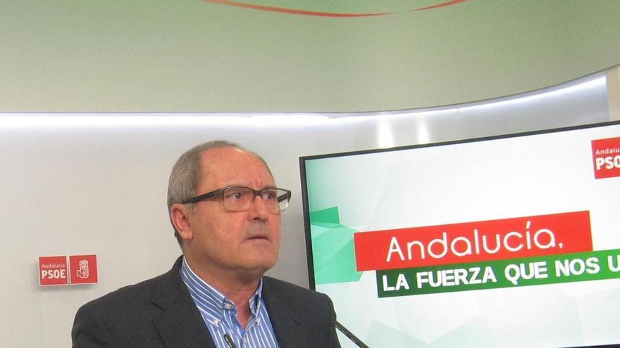 """PSOE andaluz aspira a una mayoría suficiente para no necesitar """"ningún pacto"""" con otra fuerza"""