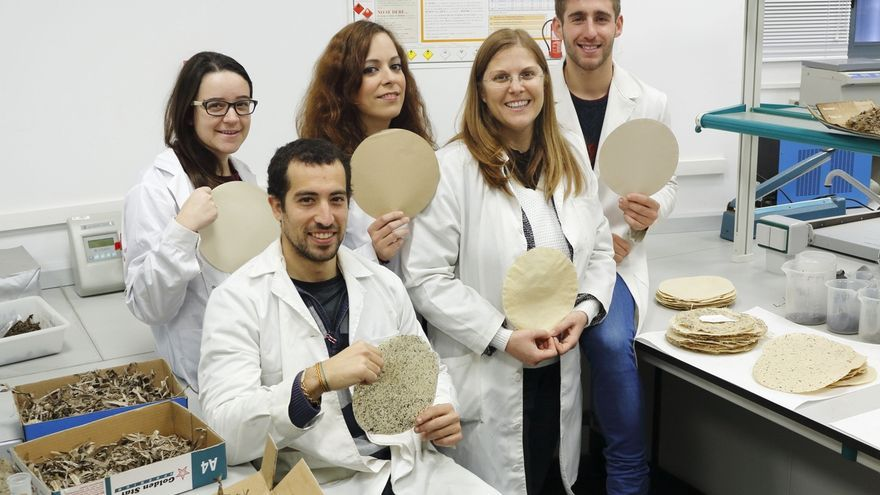 Investigadoras de la UPO obtienen celulosa a partir de algas mediante tecnologías limpias