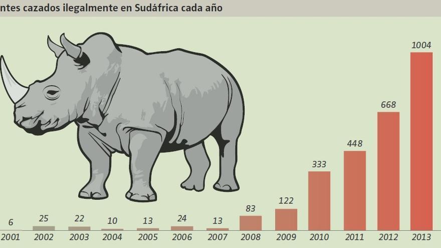 Caza furtiva de rinocerontes en Sudáfrica. Stoprhinopoaching.com