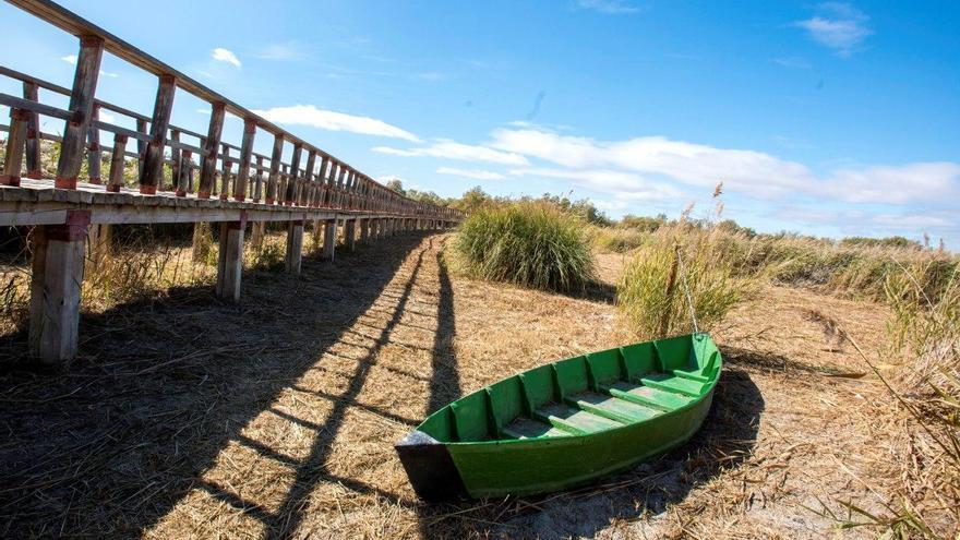 El Gobierno de Castilla-La Mancha apoya un trasvase del Tajo a las Tablas de Daimiel