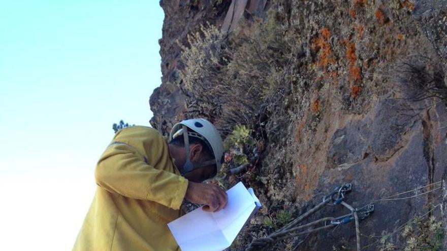 Bajando al andén en la revisión en Calzones Rotos. Foto: ANGEL PALOMARES.