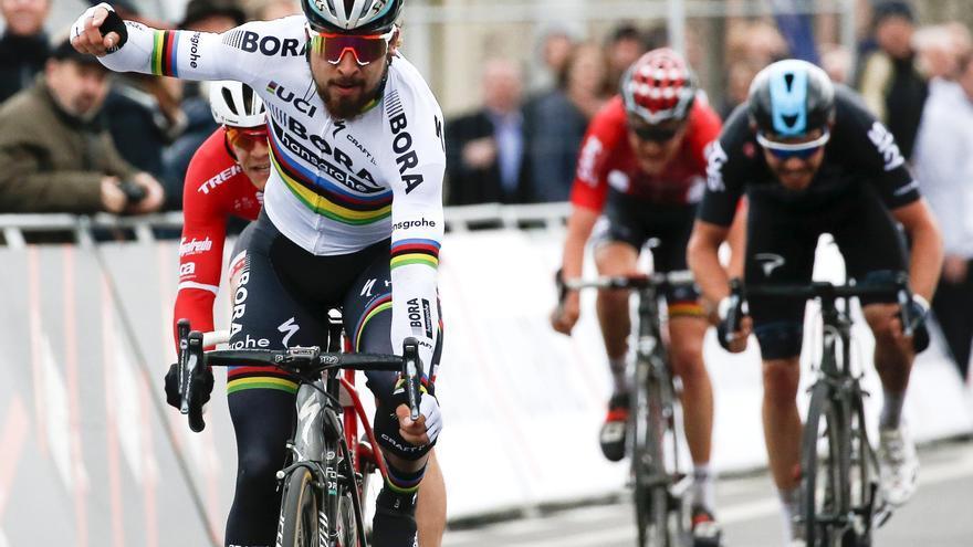 Peter Sagan podría unirse al grupo de ciclistas que han ganado tres Gante - Wevelgem.