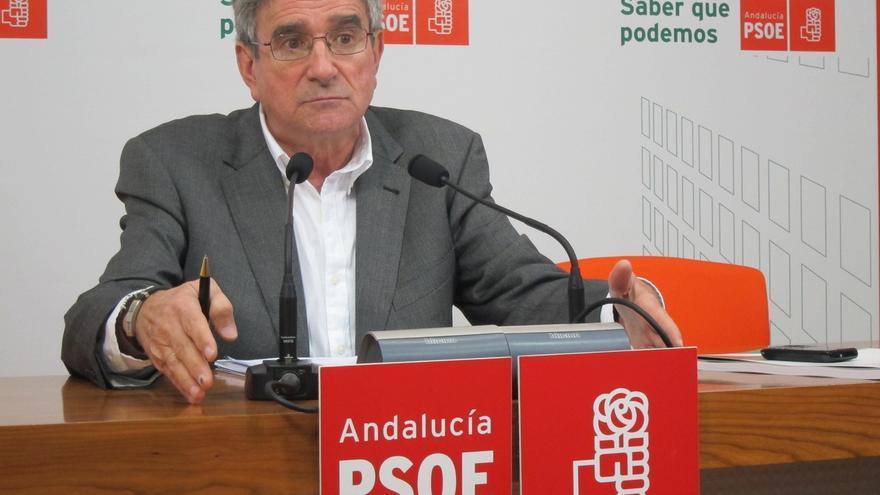 """Pizarro dice que """"nunca"""" ha visto una crisis en el PSOE como la de ahora y ve """"muy difícil"""" superar el """"roto interno"""""""