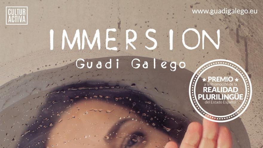 Navarra entregará el Premio a la Promoción de la Realidad Plurilingüe del Estado a la artista Guadi Galego