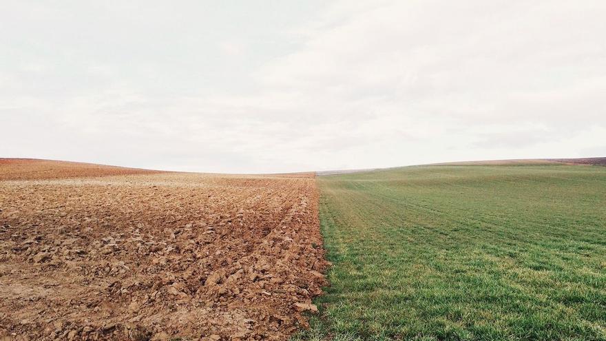El Proyecto de Ley de Extinción de Cámaras Agrarias queda listo para ir a pleno