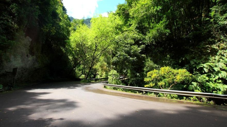 Carretera de Los Tilos.