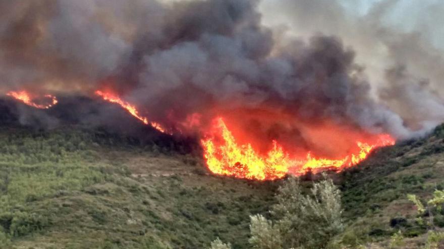 Las llamas consumen la masa vegetal en el entorno de la sierra Calderona