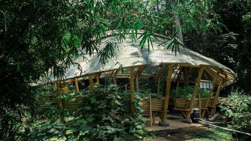 """La escuela de """"líderes verdes"""" en Bali que soñó el joyero John Hardy"""