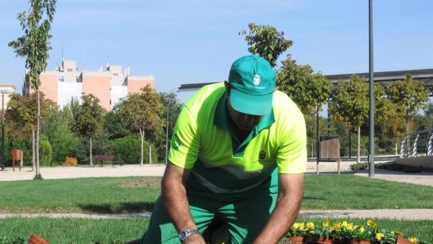 FCC se adjudica el mantenimiento de zonas verdes de L'Hospitalet de Llobregat por 29,2 millones