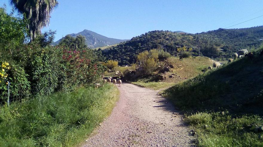 Valle de Bocaleones.