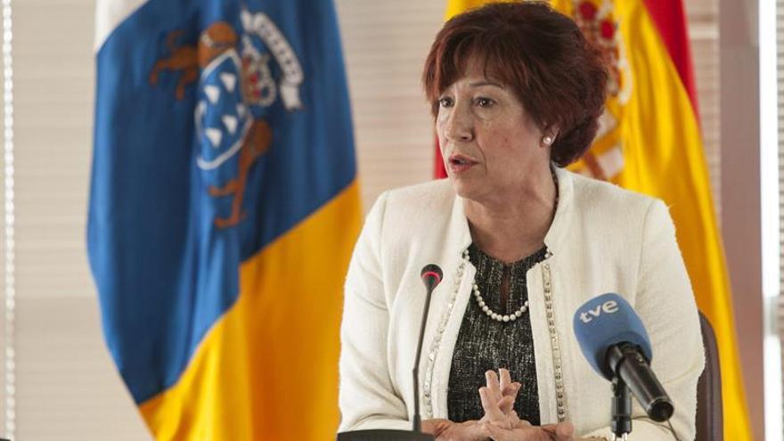 La consejera de Asuntos Sociales del Gobierno de Canarias, Inés Rojas. (Efe/Ángel Medina G.).
