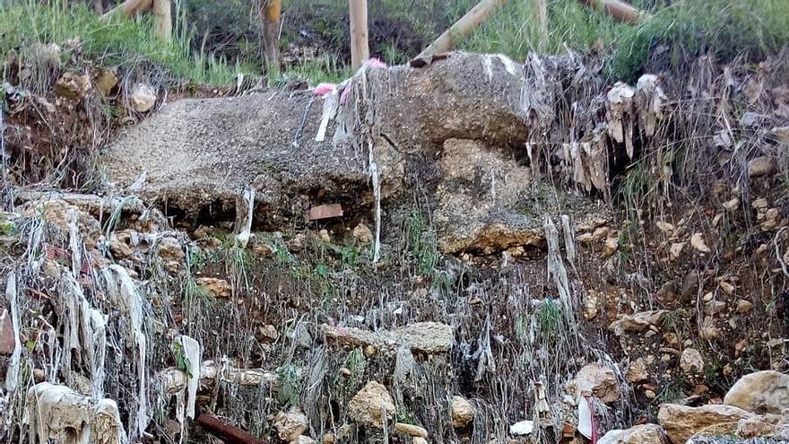 Foto: Colectivo 'Limpiando Cuenca'