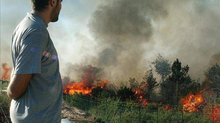 Cocinas ecológicas y cuidado forestal salvan vidas y frenan el calentamiento, asegura el BM