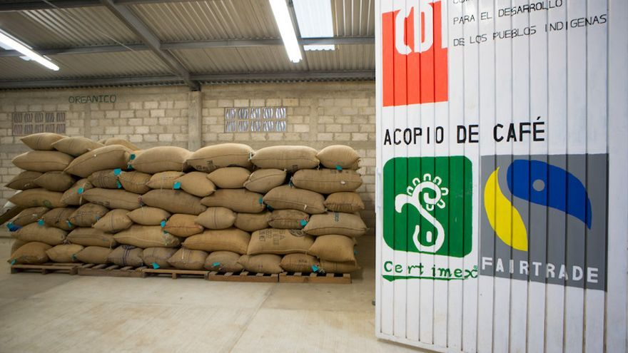 En México, apoyamos a la cooperativa de familias campesinas tseltales de Paluch´en, que produce café procedente de las montañas de Guaquitepec. Foto: Salva Campillo/Ayuda en Acción