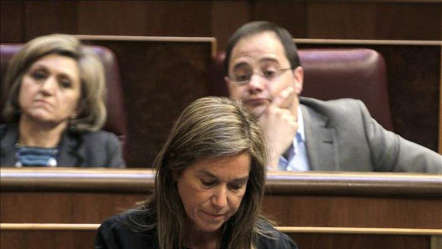 La ministra de Sanidad, Servicios Sociales e Igualdad, Ana Mato, en el Congreso de los Diputados.