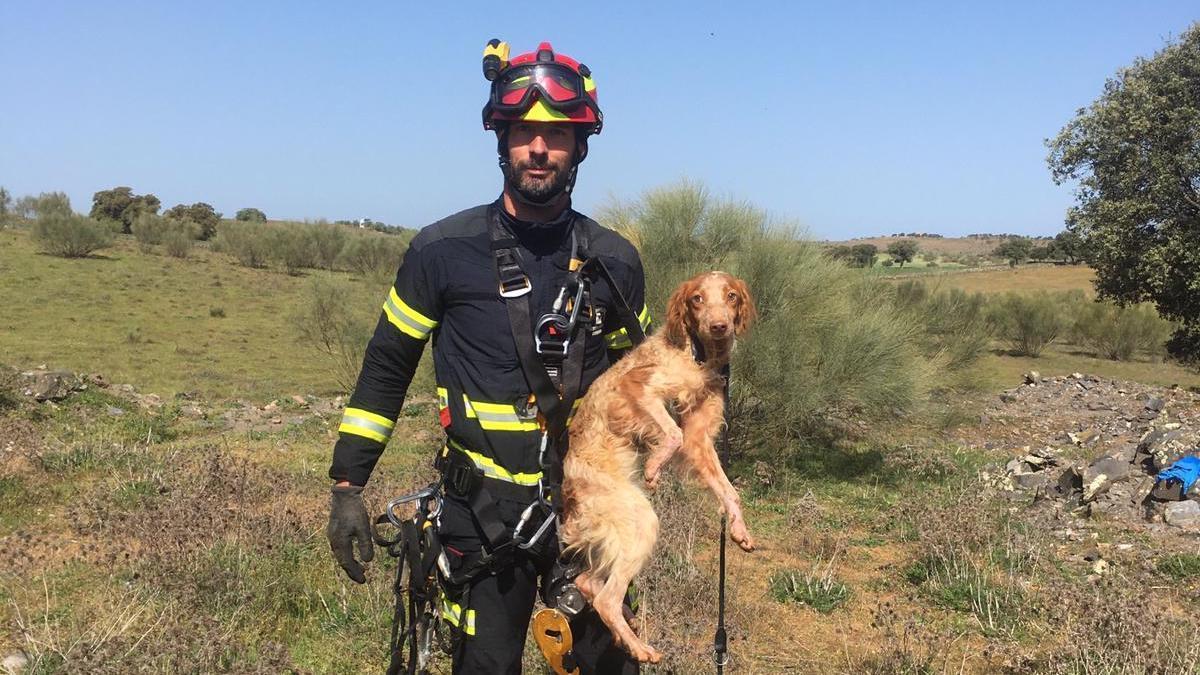 Un bombero muestra el perro rescatado.