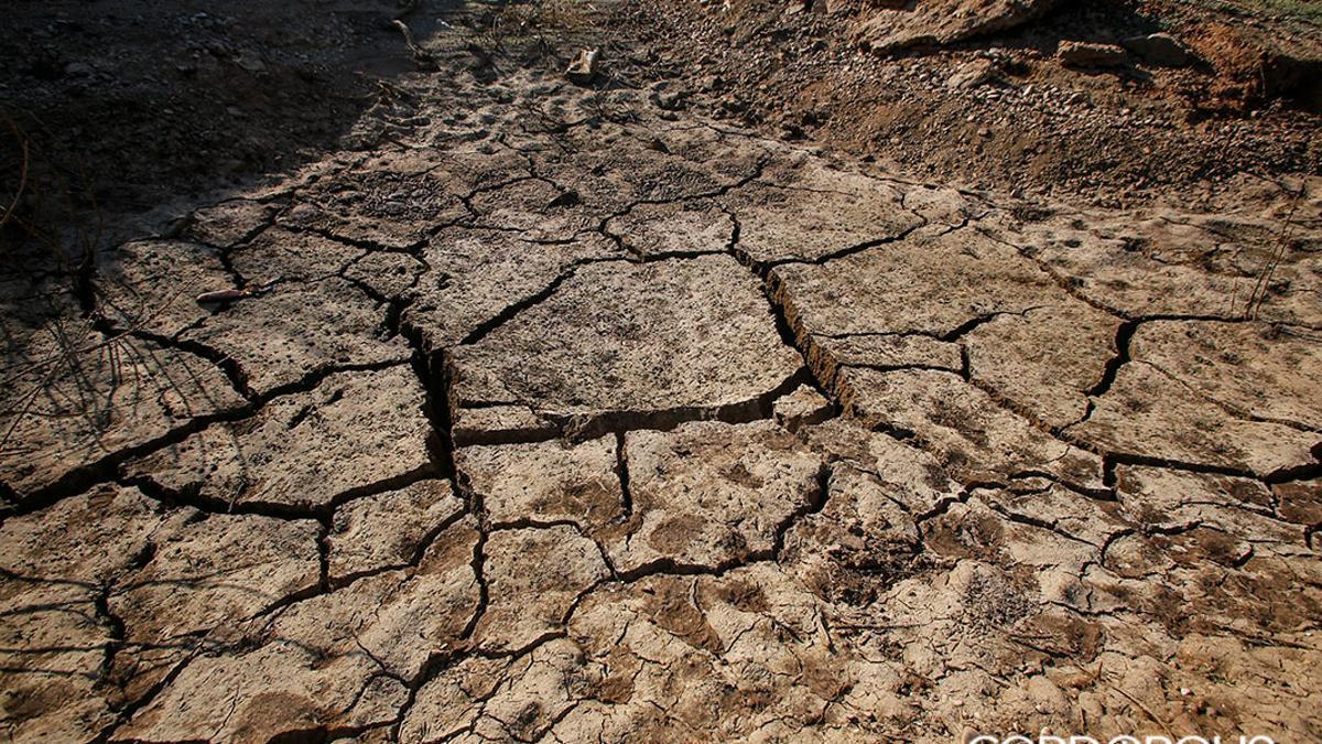 Cuarterones de tierra seca en La Breña