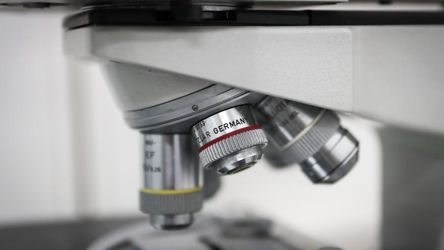 El equipo que descubrió una proteína implicada en el cáncer de hígado, premio Fundación Esteve