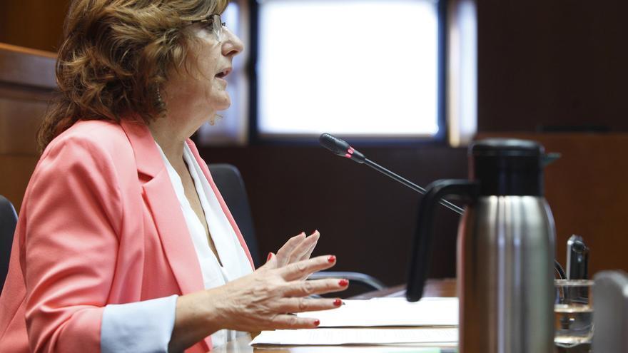 La consejera de Ciudadanía y Derechos Sociales, María Victoria Broto.