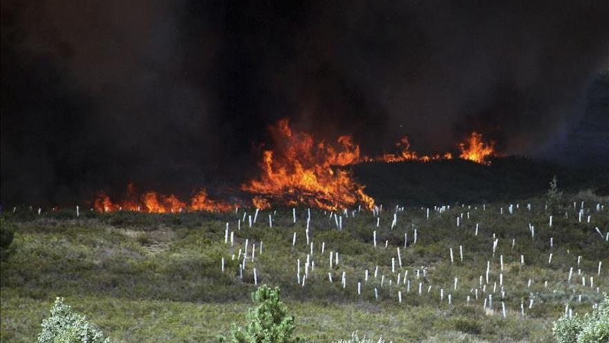 Sigue activo incendio que ha calcinado 180 hectáreas en Cordunilla (Burgos)