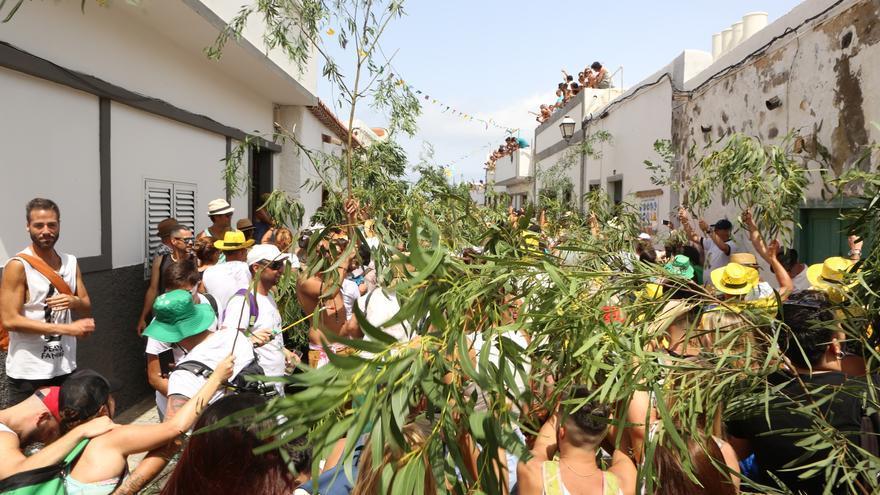 Fiesta de La Rama 2016 en Agaete (ALEJANDRO RAMOS)