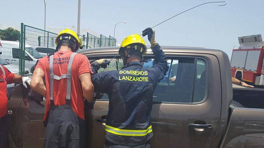 """Policía y bomberos liberan a un perro que estaba solo en un coche """"a pleno sol""""."""