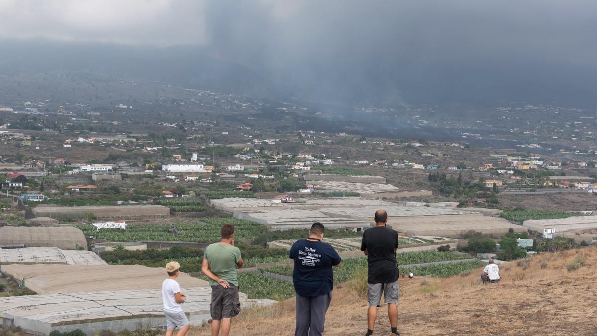 Vecinos observan desde un alto el avance de la colada de lava del volcán de La Palma en las cercanías de la localidad de La Laguna