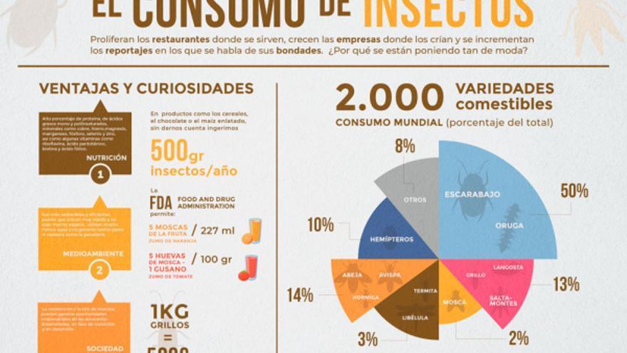 Consumo de insectos