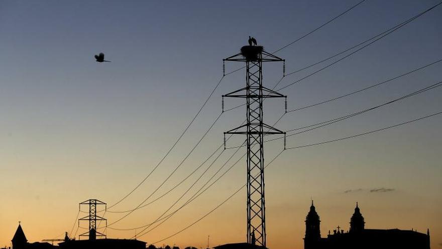 Dos cigüeñas permanecen en el nido de la torre de un tendido eléctrico.