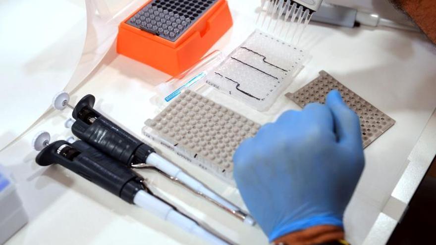 Descubren mutaciones en una zona inexplorada del genoma de células tumorales