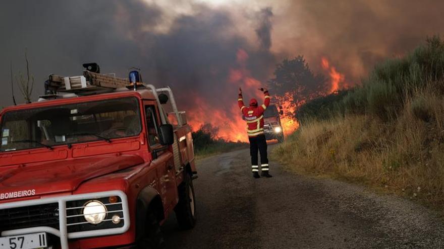 Más de 700 bomberos combaten un incendio en el centro de Portugal