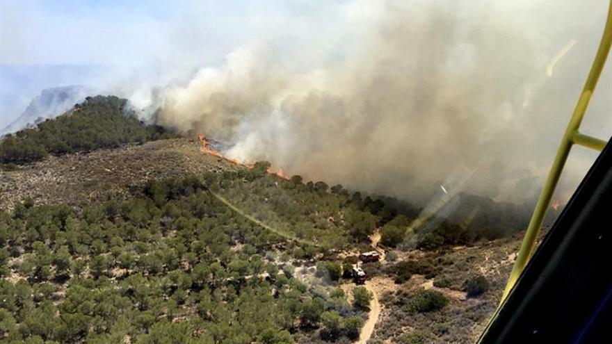 Se declara un incendio en un monte de pinar junto a cala El Gorguel (Murcia)