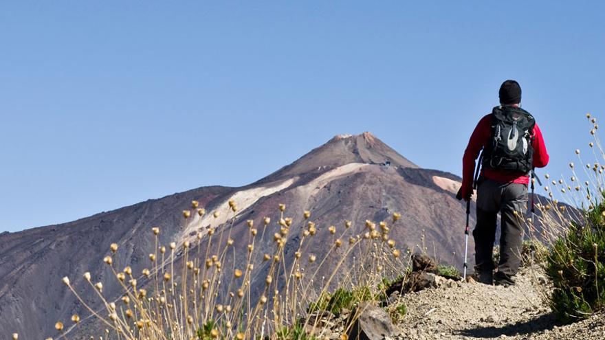Imagen de la carrera Tenerife Walking Festival. (Página oficial del evento).