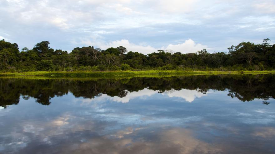 Laguna de Jatuncocha, Parque Nacional Yasuní. | FOTO: Esteffany Bravo S.