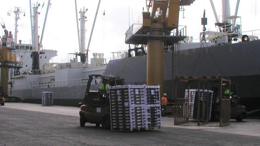 Canarias ha exportado un total de 21,8 millones de kilos de tomates en la primera mitad de la campaña de la zafra.