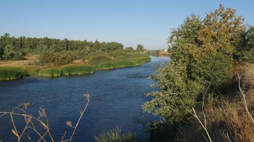 El río Tajo a su paso por Talavera / MAGRAMA