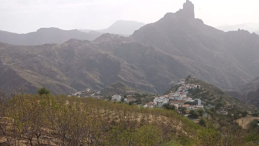 Efectos del incendio en la finca El Ventoso, en Tejeda.