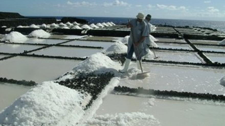Zafra de sal en La Palma.