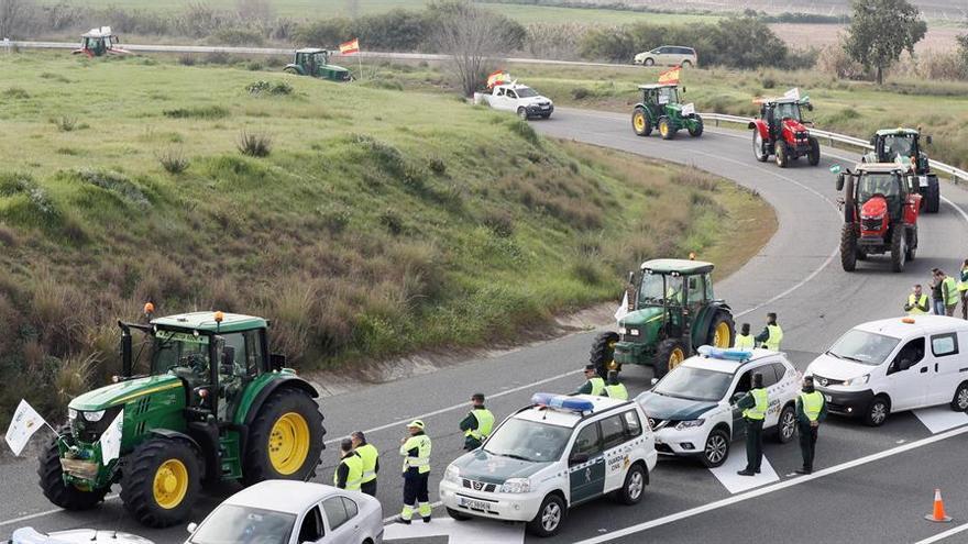 Tractorada realizada por  agricultores y ganaderos de la provincia de Sevilla